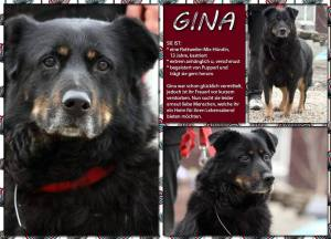 Gina1